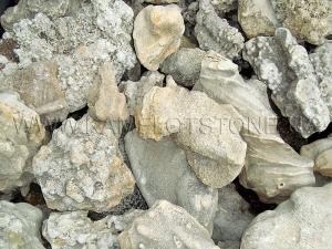 Купить Ландшафтный камень - «Корал» скальный