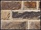 Купить - Песчаник «Плато Охра погонаж»